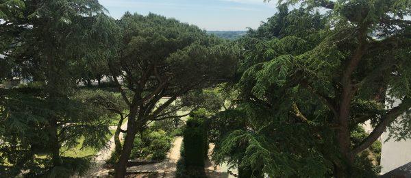 BUTTE STE ANNE – T3 avec vue sur parc